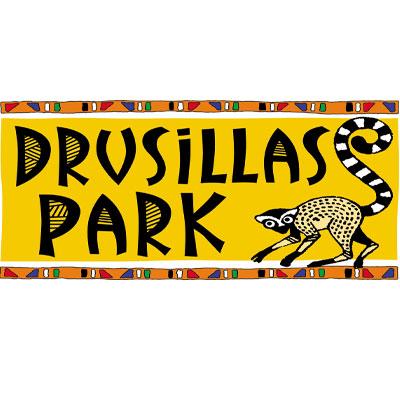 drusillas
